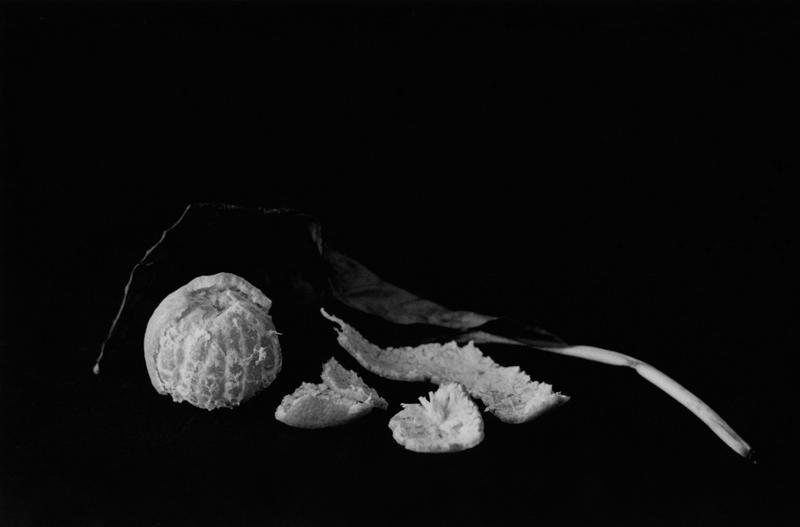 Mandarin and Dead Leaf