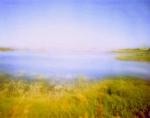 Slough Ponds