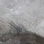 Quills; Bonneville Salt Flats, UT