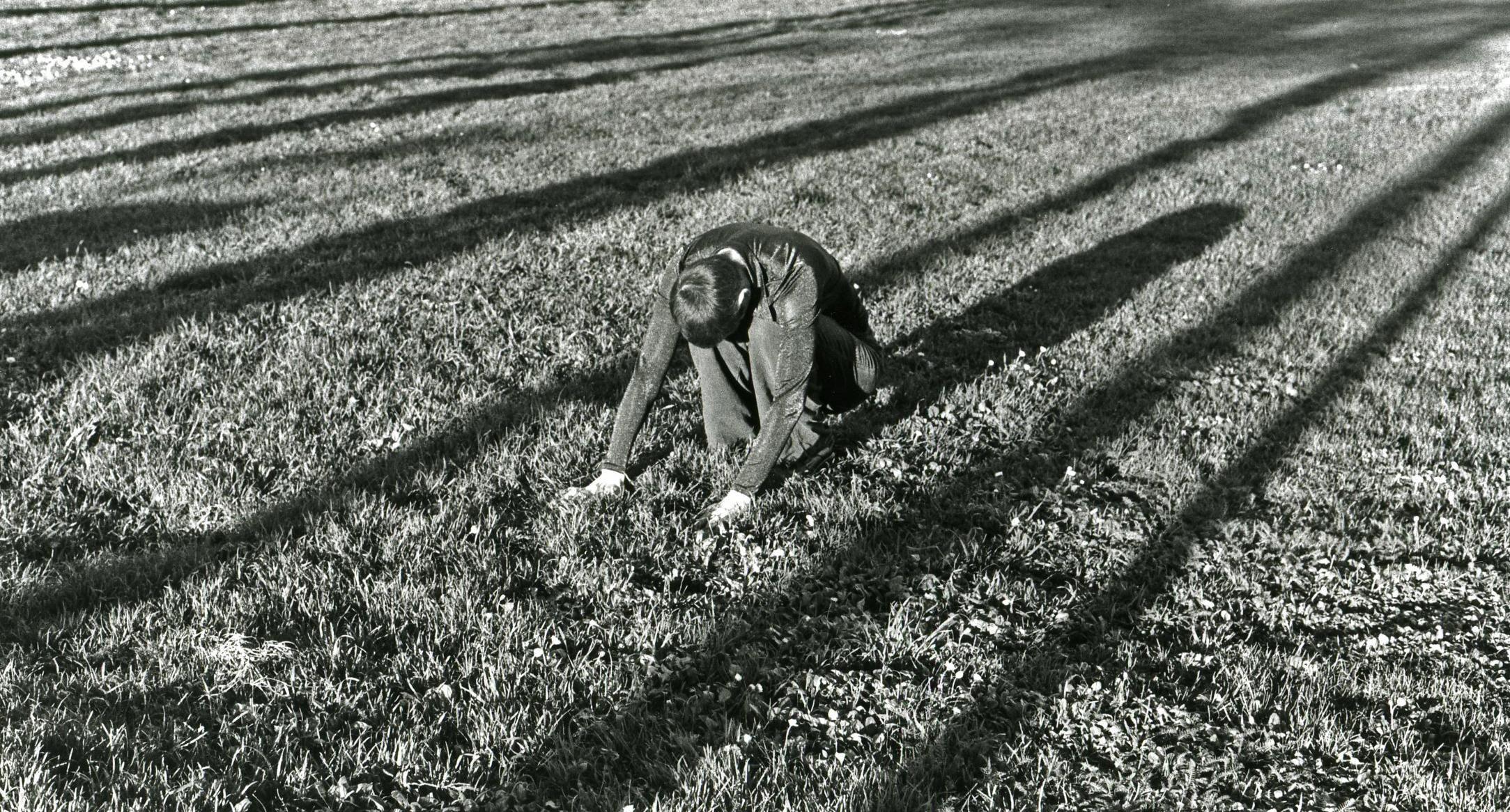 Christine Federici - Federici_vp_long shadows