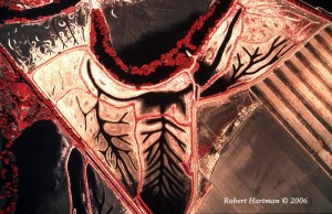 RobertHartman_AnatomyoftheSanJoaquin